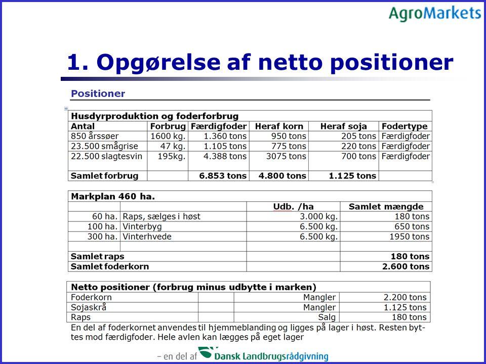 1. Opgørelse af netto positioner