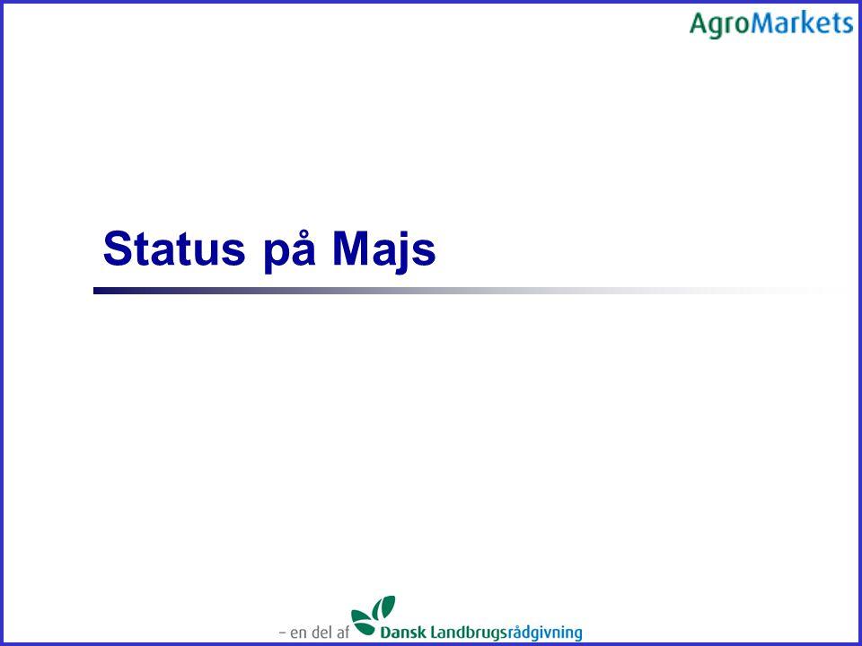 Status på Majs