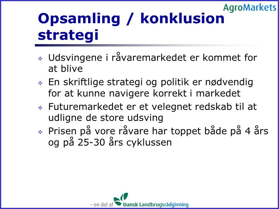 Opsamling / konklusion strategi