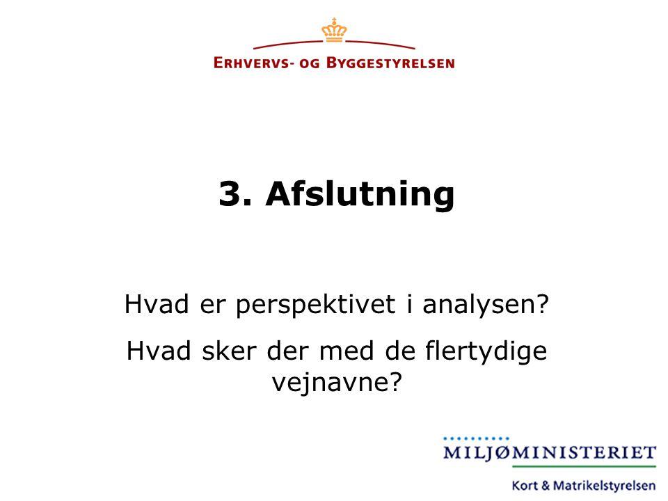 3. Afslutning Hvad er perspektivet i analysen
