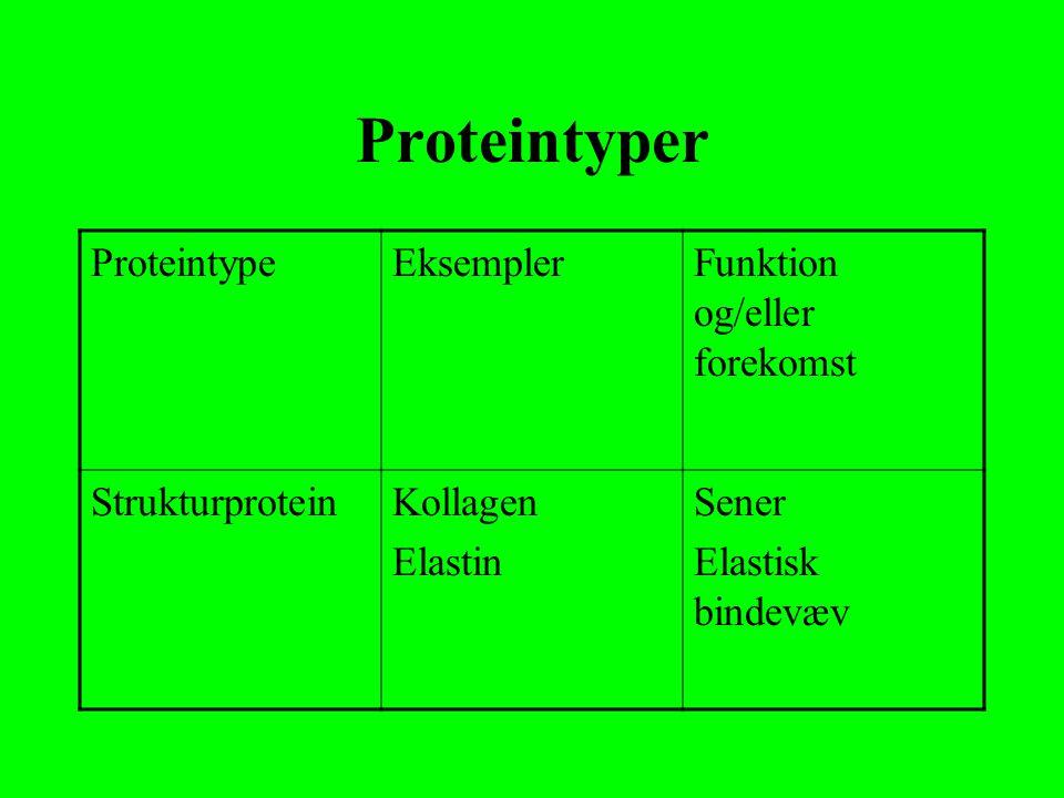 Proteintyper Proteintype Eksempler Funktion og/eller forekomst