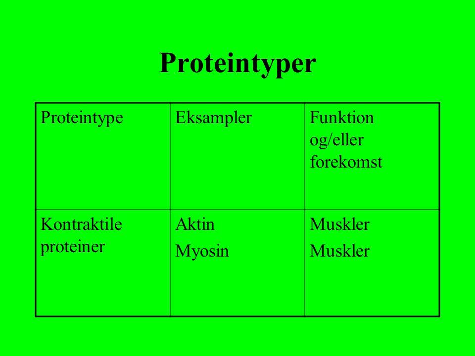 Proteintyper Proteintype Eksampler Funktion og/eller forekomst