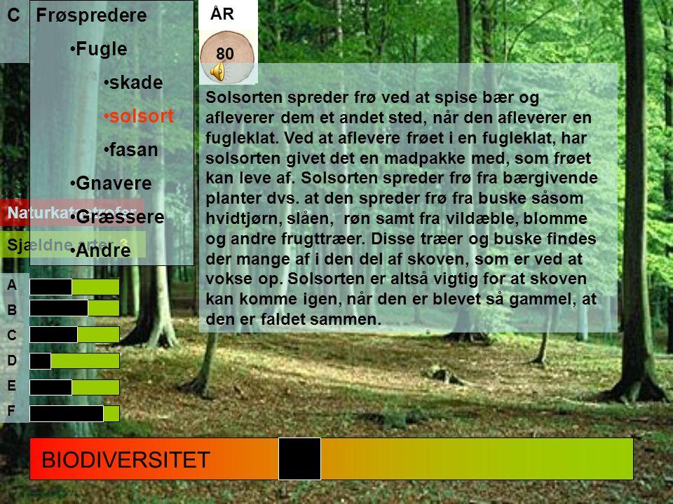 BIODIVERSITET Frøspredere Fugle skade solsort fasan Gnavere Græssere