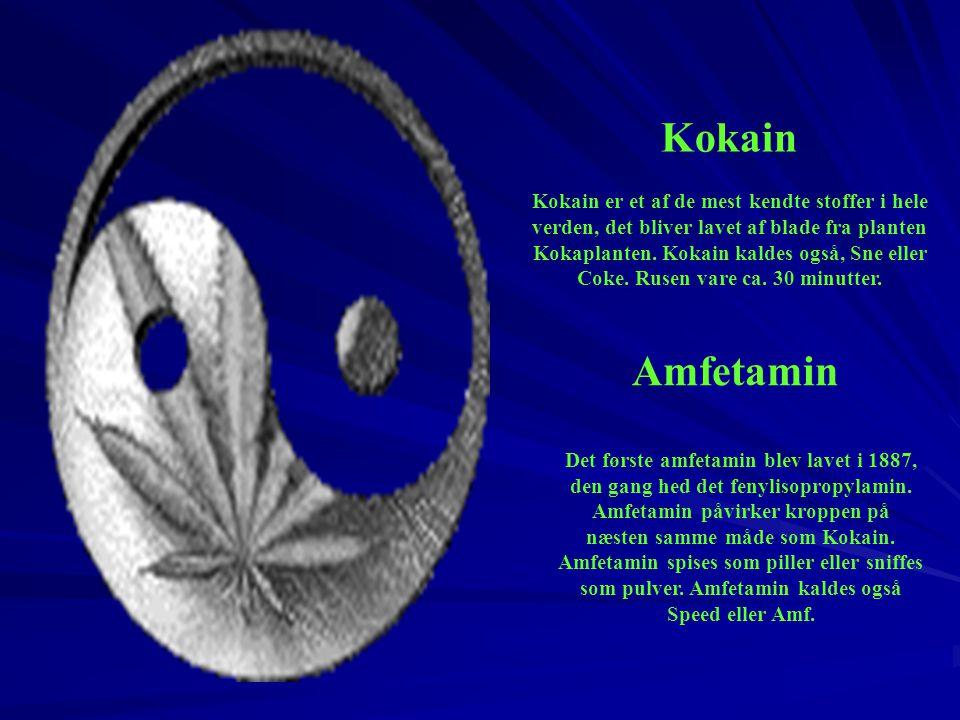 Kokain Kokain er et af de mest kendte stoffer i hele verden, det bliver lavet af blade fra planten.