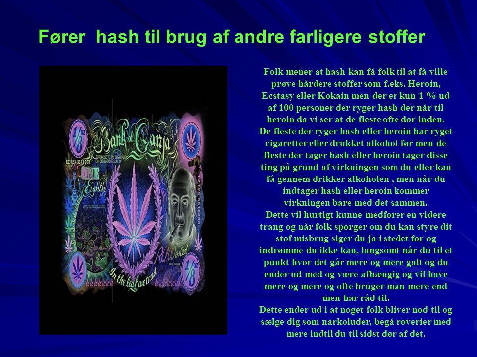Fører hash til brug af andre farligere stoffer