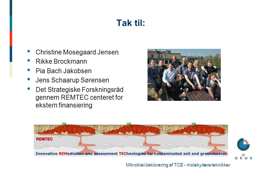 Tak til: Christine Mosegaard Jensen Rikke Brockmann Pia Bach Jakobsen