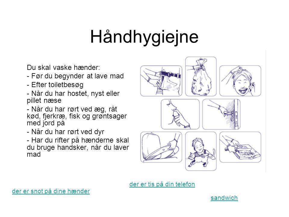 Håndhygiejne Du skal vaske hænder: Før du begynder at lave mad