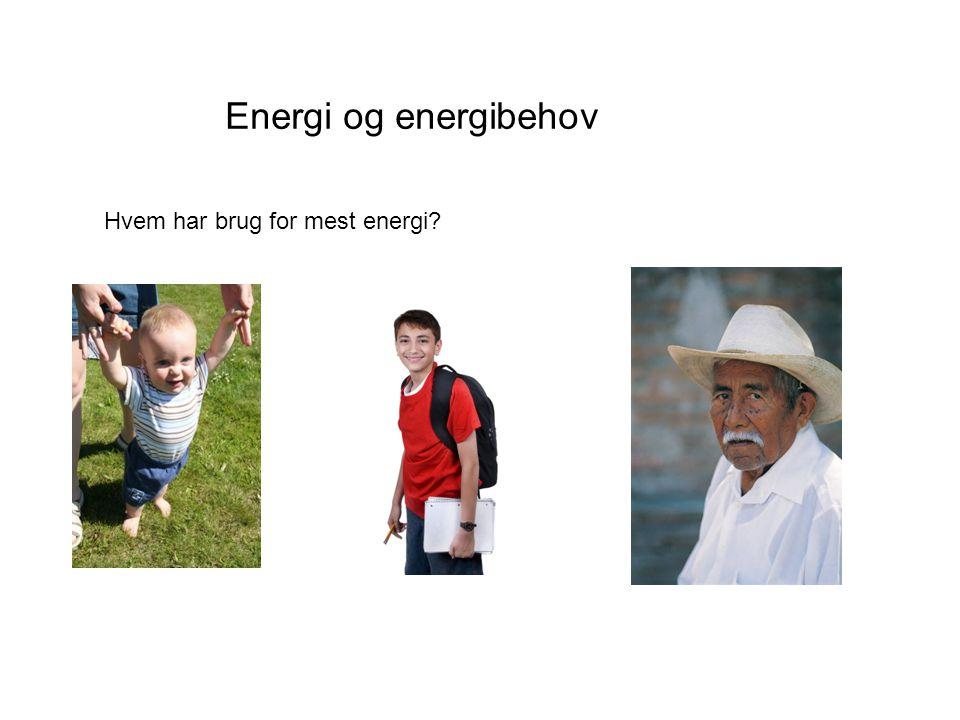 Energi og energibehov Hvem har brug for mest energi