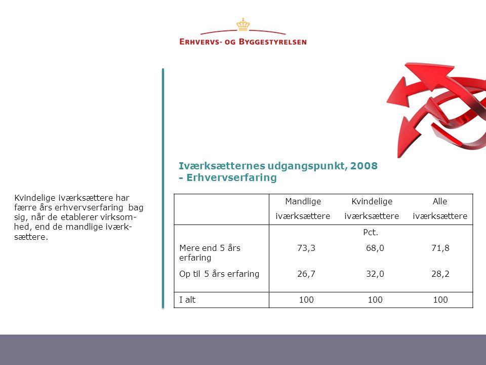 Iværksætternes udgangspunkt, 2008 - Erhvervserfaring