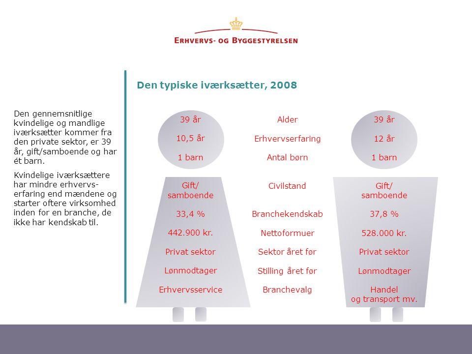 Den typiske iværksætter, 2008