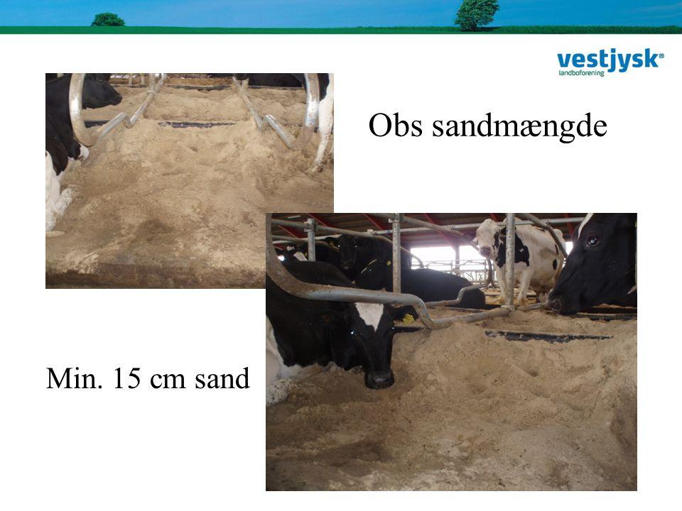 Obs sandmængde Min. 15 cm sand Obs sandmængde