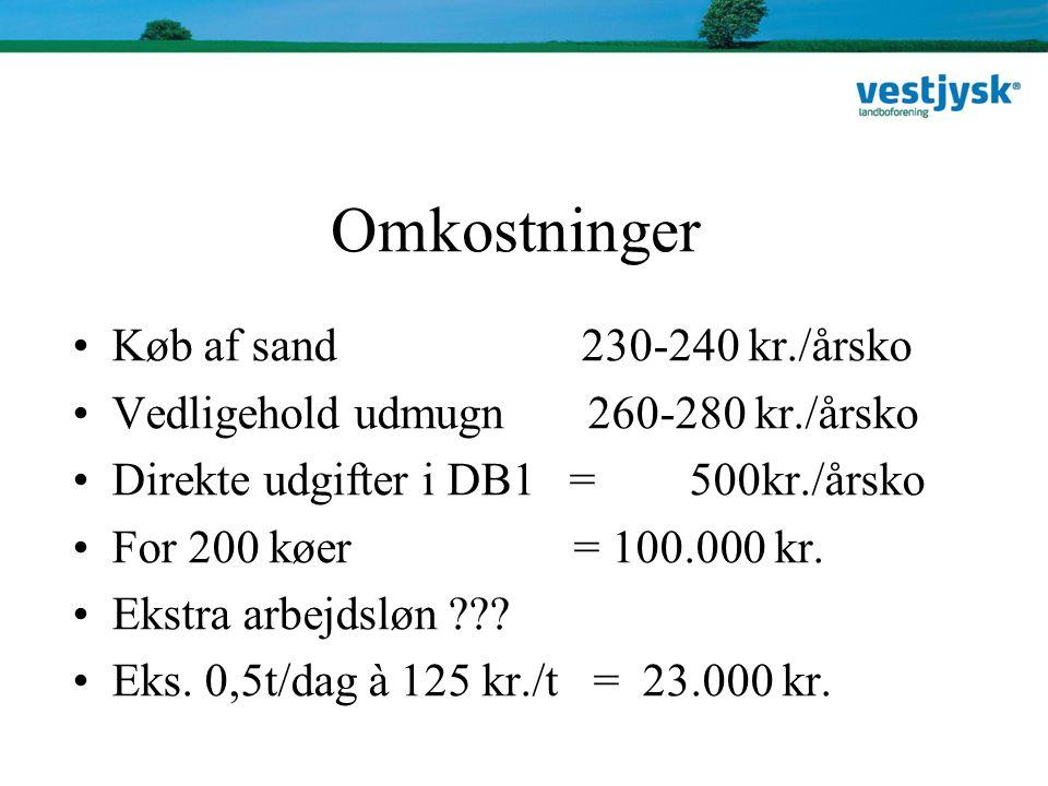 Omkostninger Køb af sand 230-240 kr./årsko