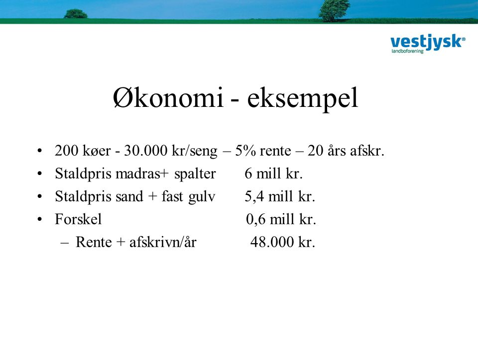 Økonomi - eksempel 200 køer - 30.000 kr/seng – 5% rente – 20 års afskr. Staldpris madras+ spalter 6 mill kr.