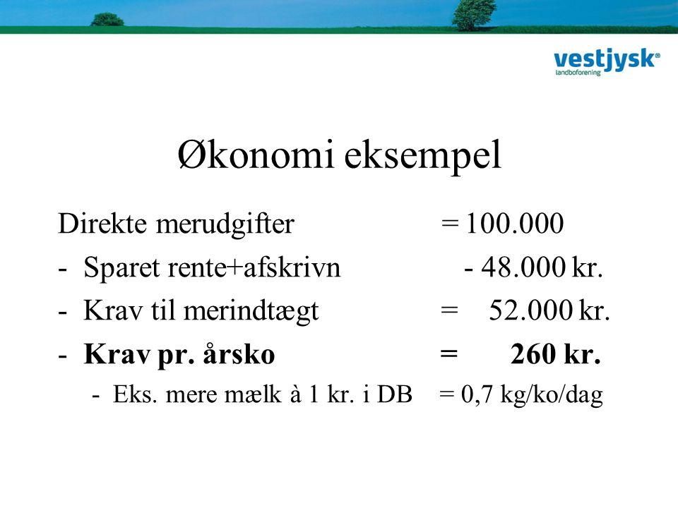 Økonomi eksempel Direkte merudgifter = 100.000