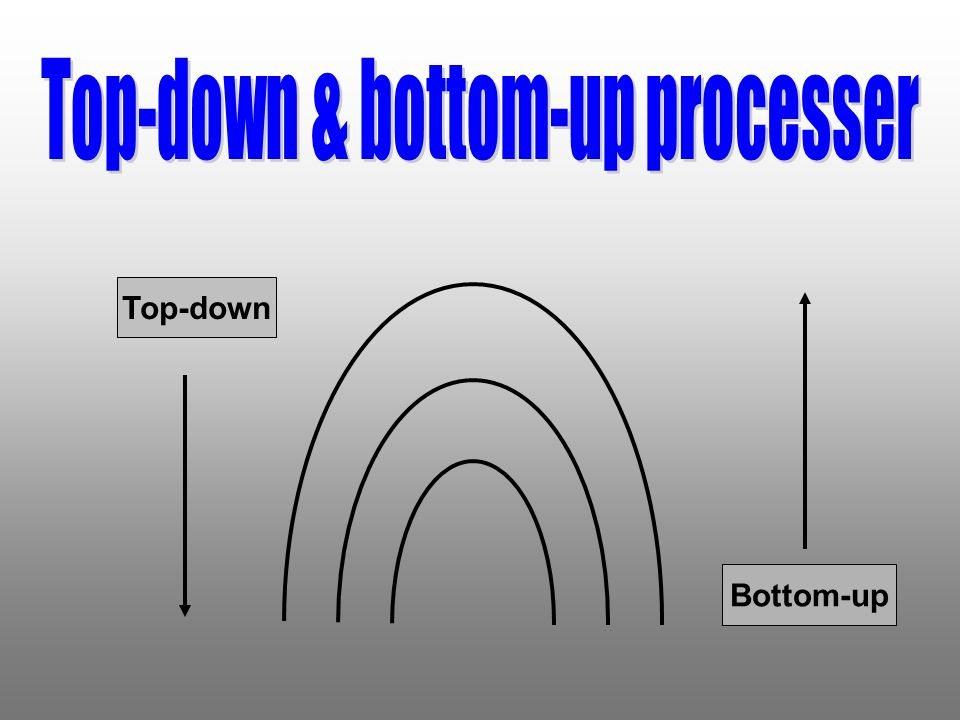Top-down & bottom-up processer