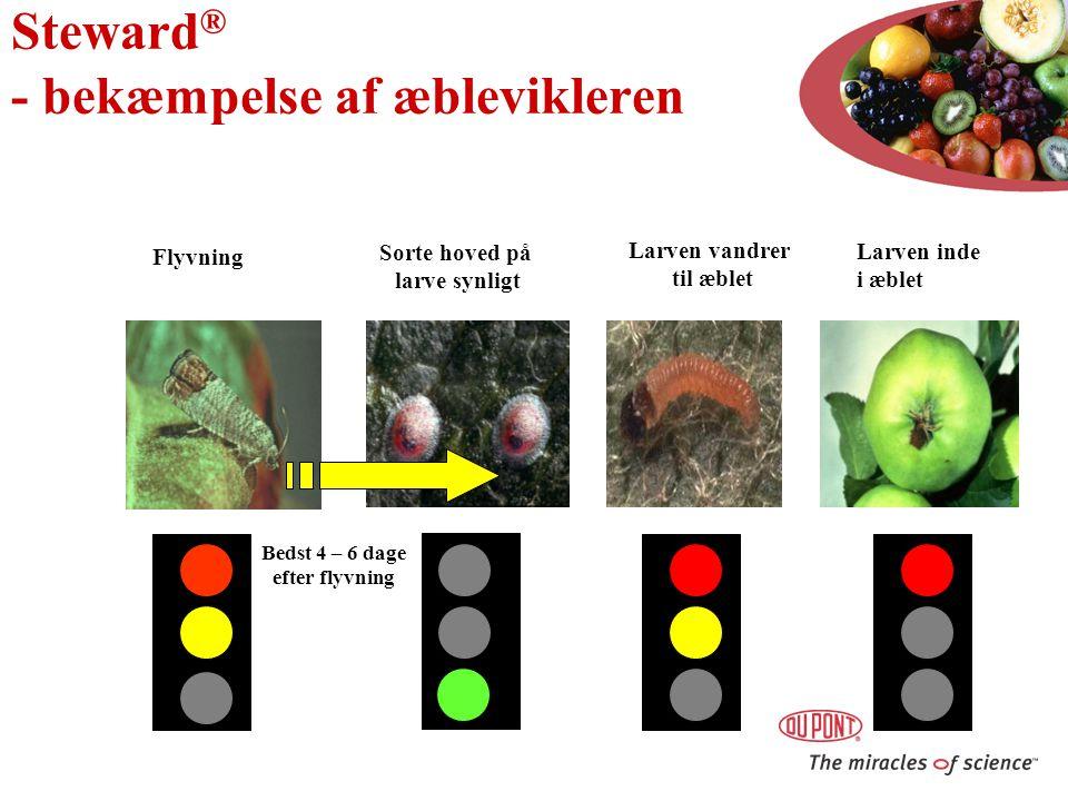 Steward® - bekæmpelse af æblevikleren