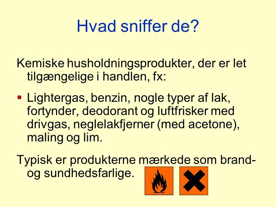 Hvad sniffer de Kemiske husholdningsprodukter, der er let tilgængelige i handlen, fx: