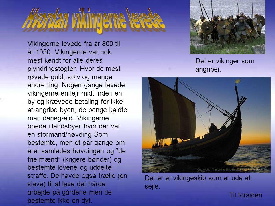 Hvordan vikingerne levede
