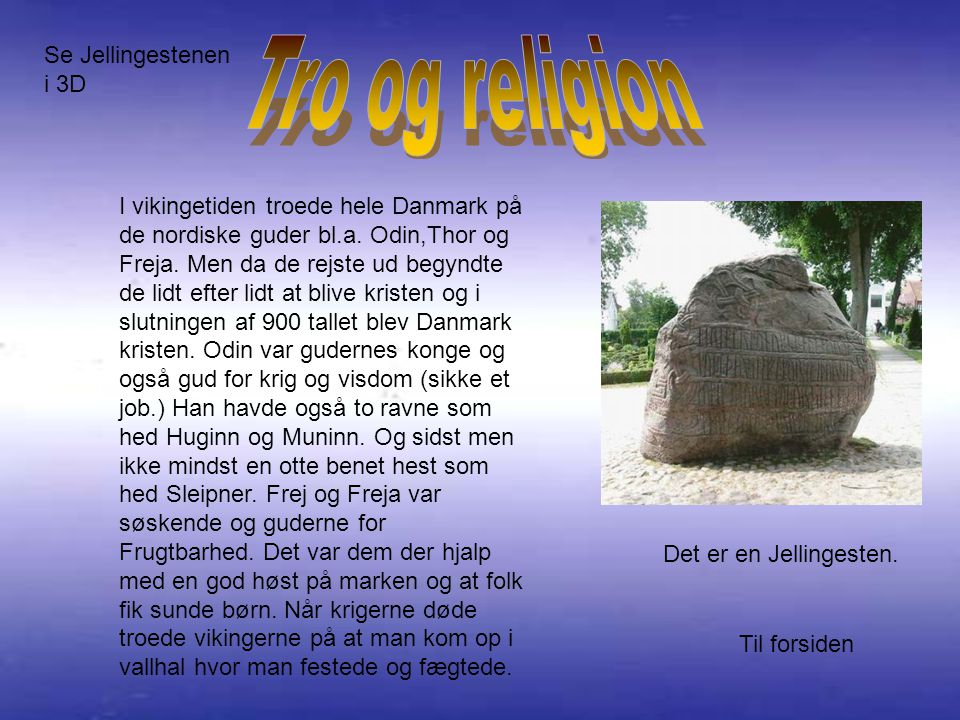 vikinge tiden krigs skibe og handelsskibe