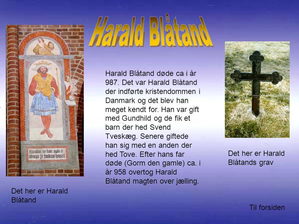 Harald Blåtand