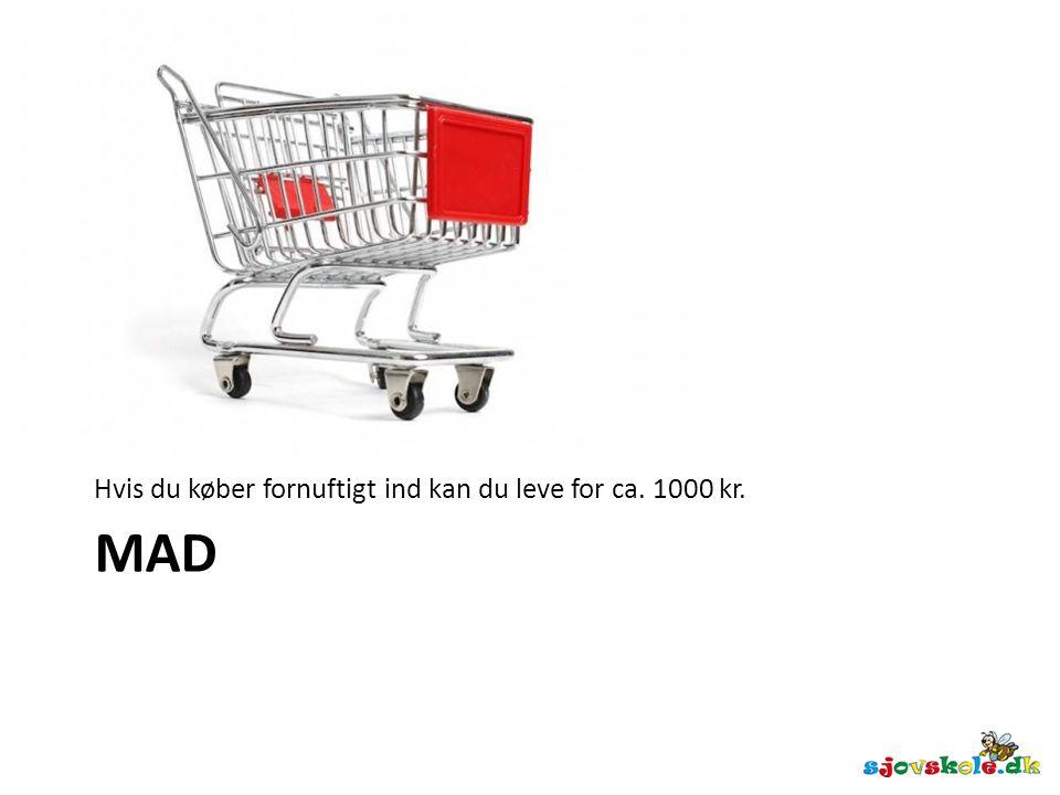 Hvis du køber fornuftigt ind kan du leve for ca. 1000 kr.