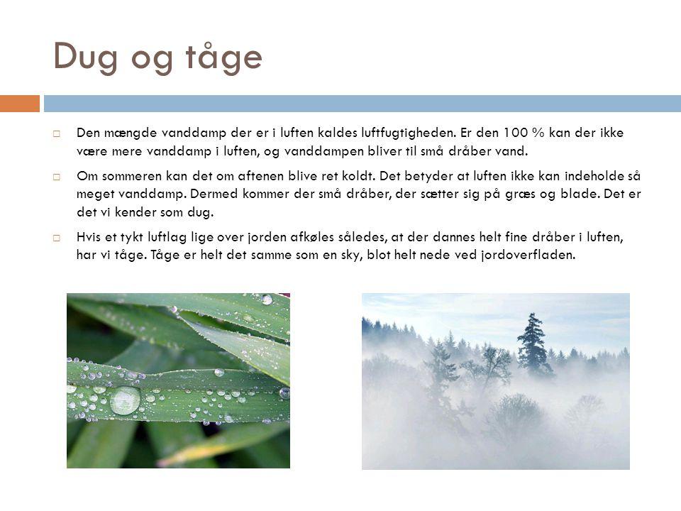 Dug og tåge