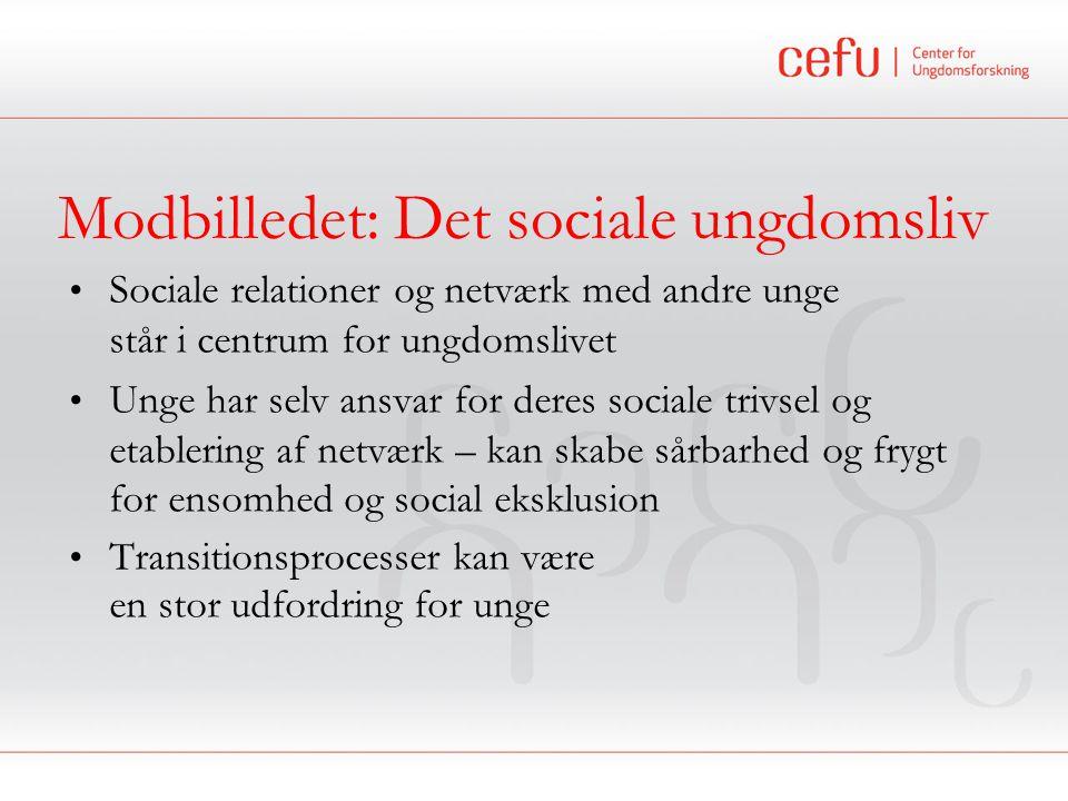 Modbilledet: Det sociale ungdomsliv