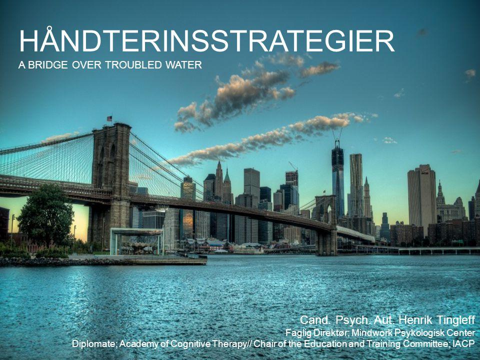 HÅNDTERINSSTRATEGIER A BRIDGE OVER TROUBLED WATER