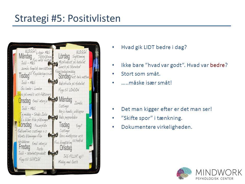 Strategi #5: Positivlisten