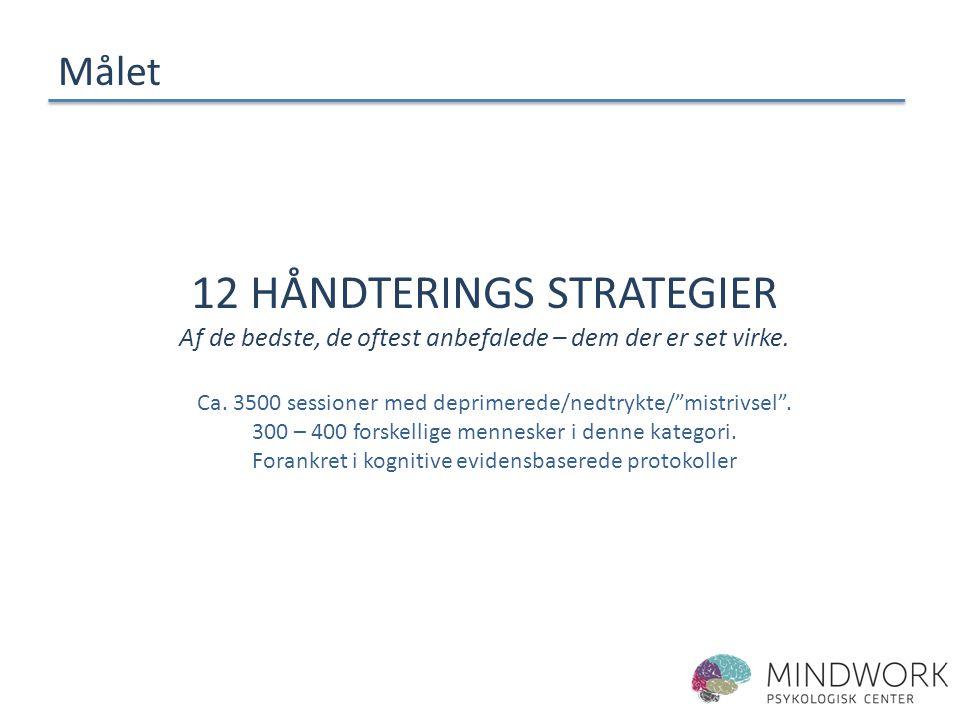 12 håndterings strategier