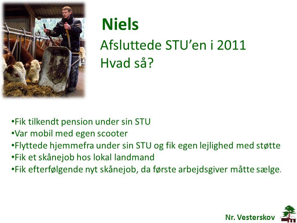 Niels Afsluttede STU'en i 2011 Hvad så