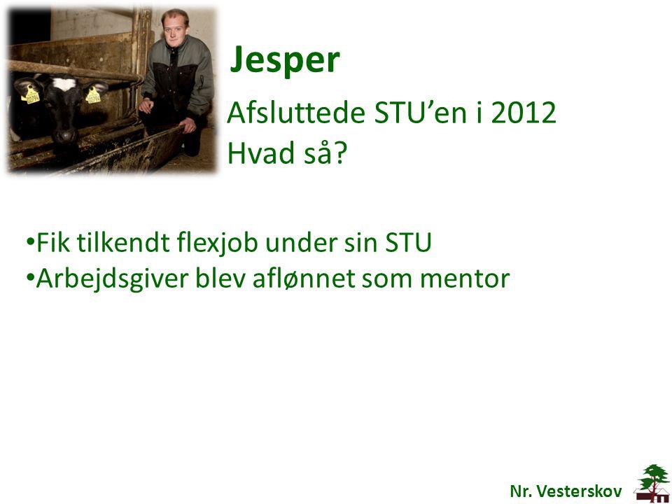 Jesper Afsluttede STU'en i 2012 Hvad så