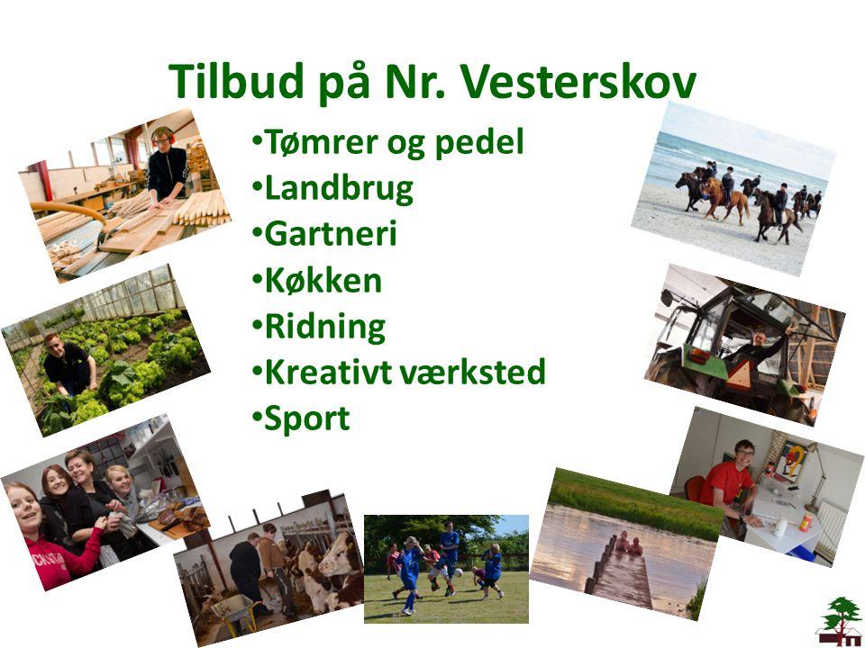 Tilbud på Nr. Vesterskov