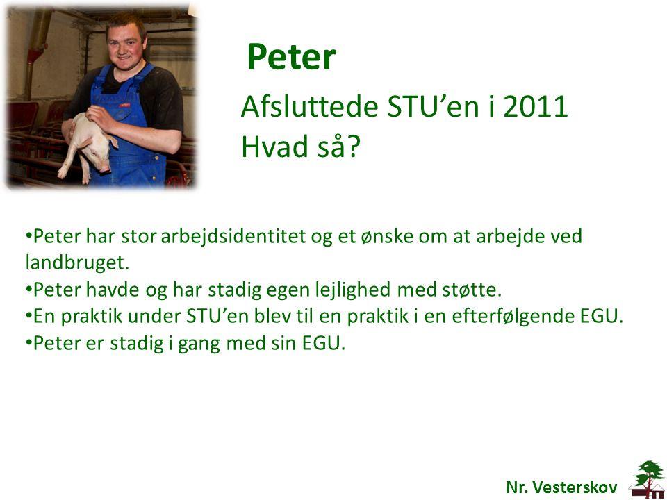 Peter Afsluttede STU'en i 2011 Hvad så