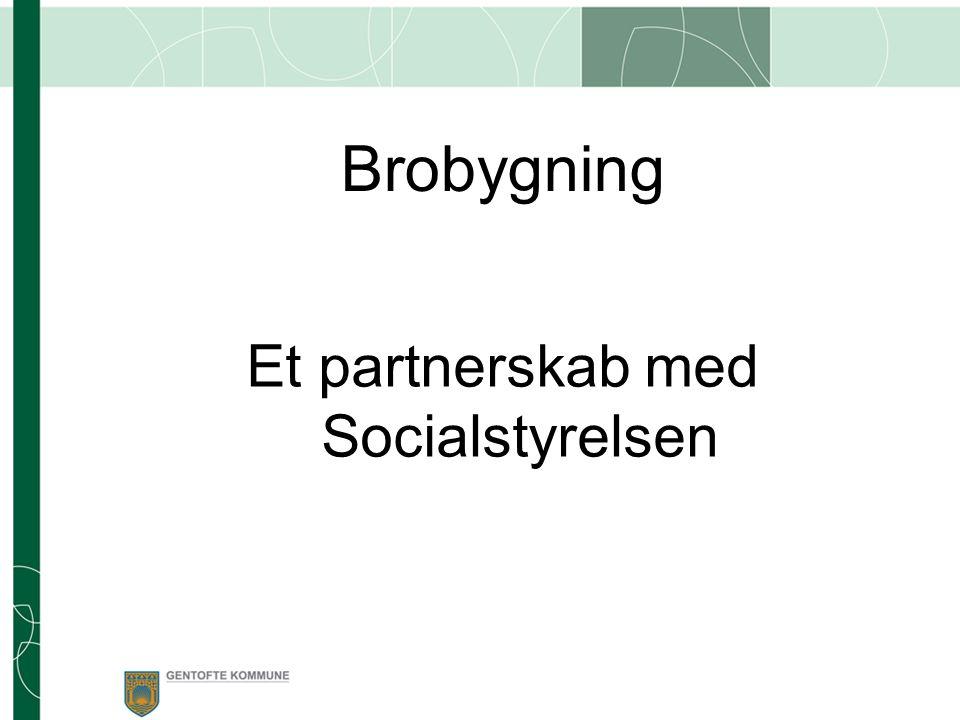 Et partnerskab med Socialstyrelsen