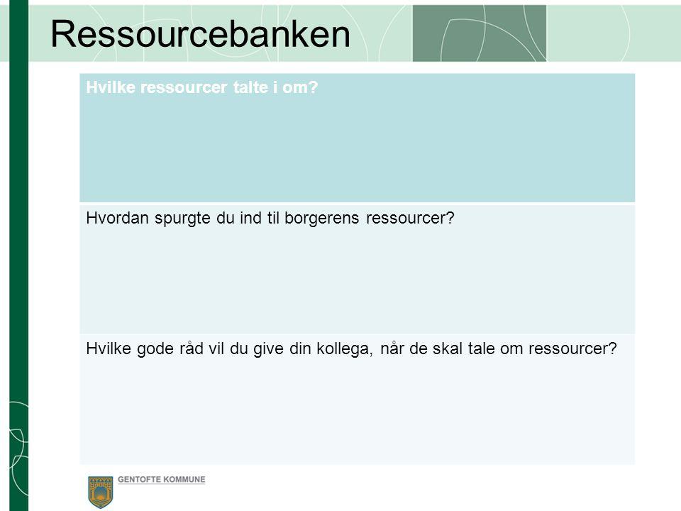 Ressourcebanken Hvilke ressourcer talte i om