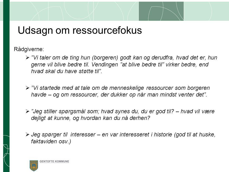 Udsagn om ressourcefokus