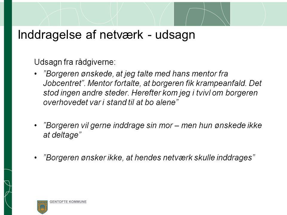Inddragelse af netværk - udsagn