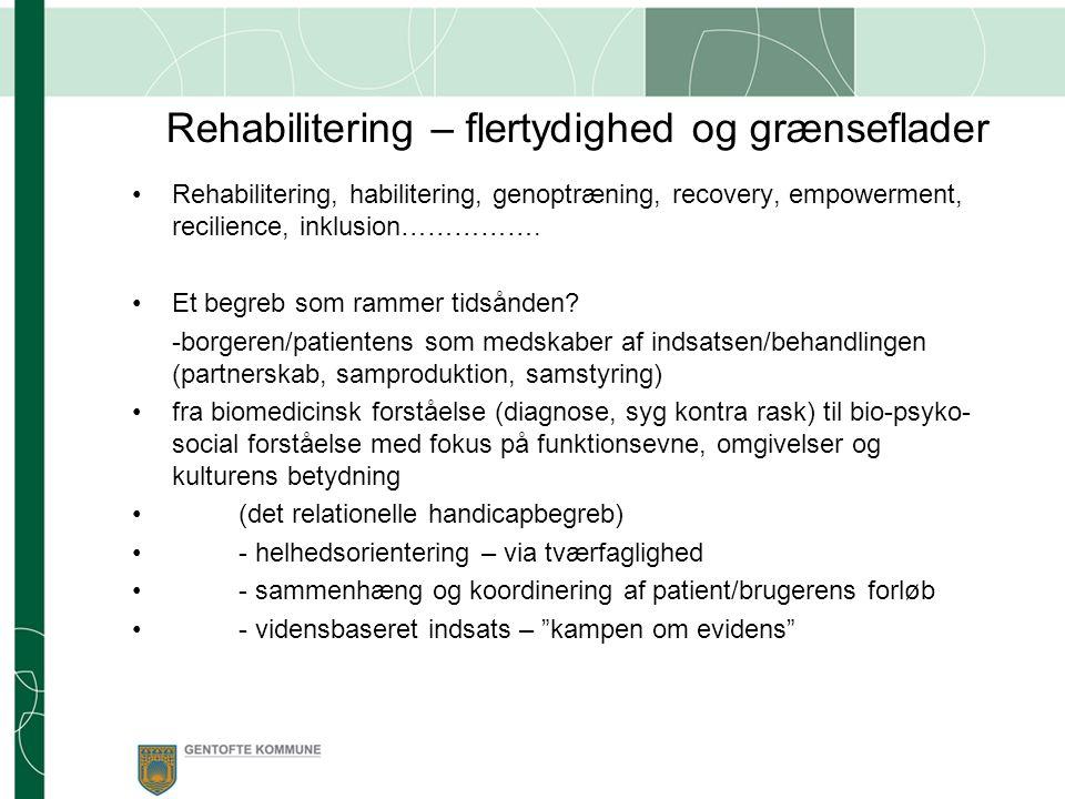 Rehabilitering – flertydighed og grænseflader