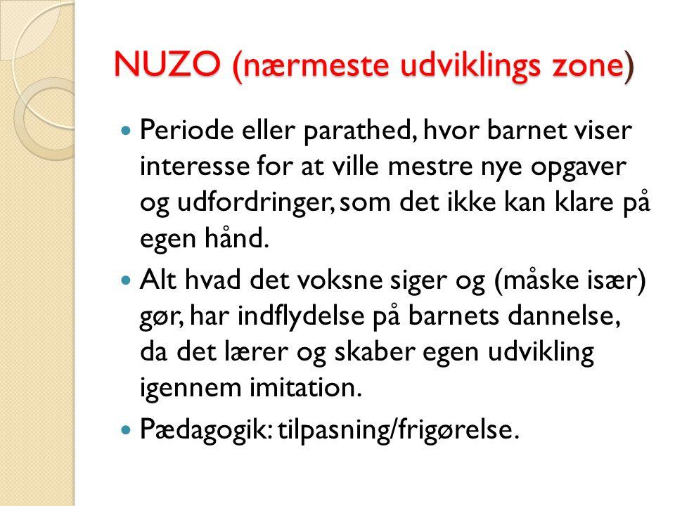 NUZO (nærmeste udviklings zone)