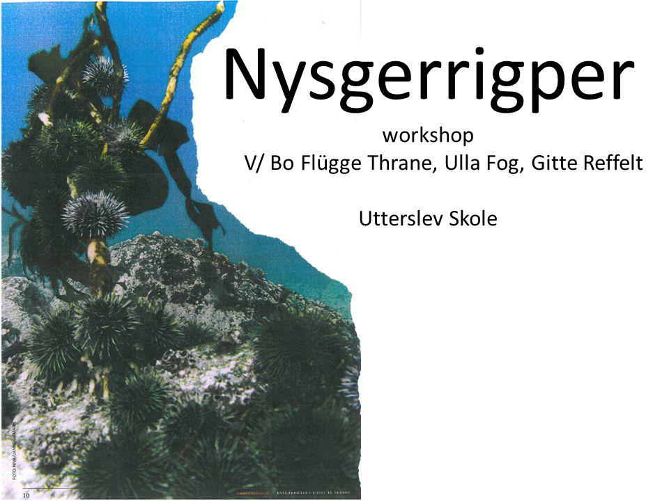 Nysgerrigper workshop V/ Bo Flügge Thrane, Ulla Fog, Gitte Reffelt Utterslev Skole