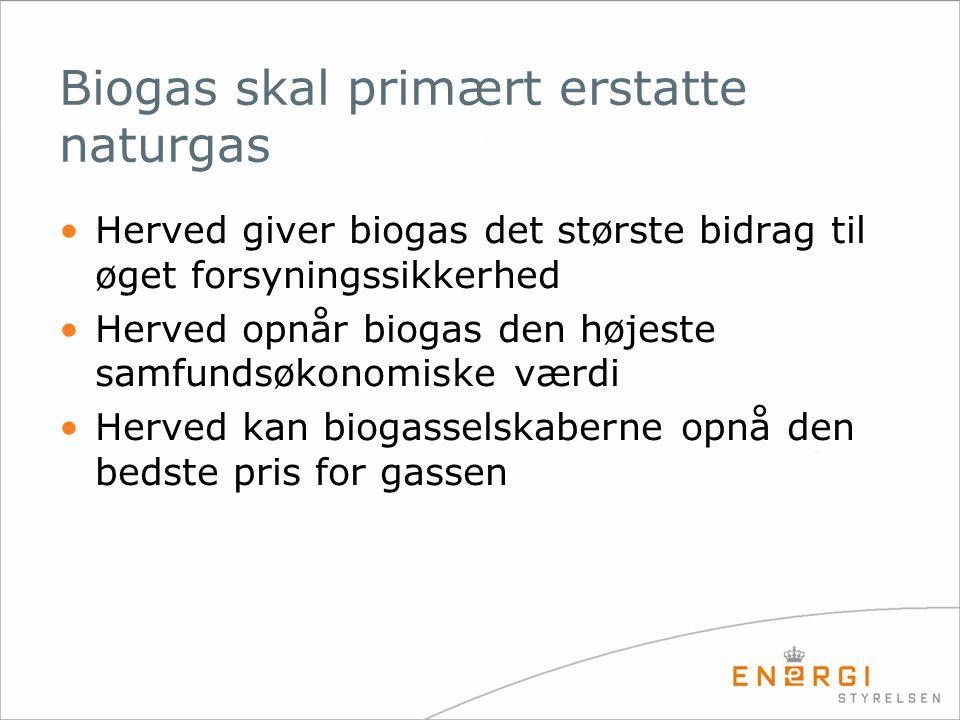 Biogas skal primært erstatte naturgas