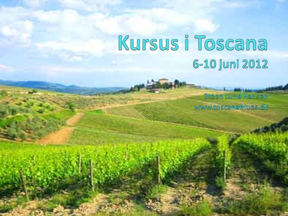 Kursus i Toscana 6-10 juni 2012 Steen Lund Hansen www.toscanablues.dk