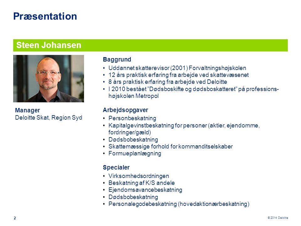 Præsentation Steen Johansen Baggrund
