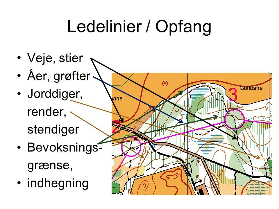 Ledelinier / Opfang Veje, stier Åer, grøfter Jorddiger, render,