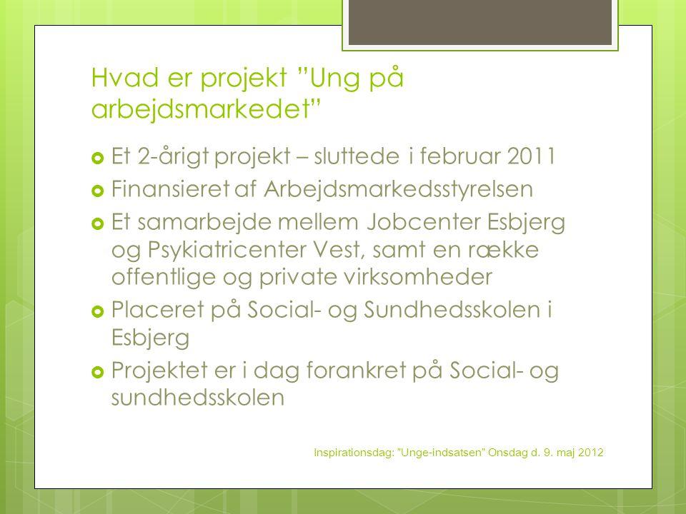 Hvad er projekt Ung på arbejdsmarkedet
