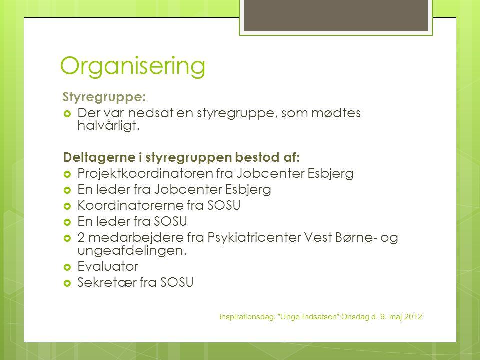 Organisering Der var nedsat en styregruppe, som mødtes halvårligt.