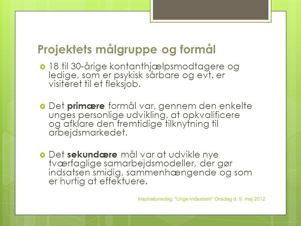 Projektets målgruppe og formål
