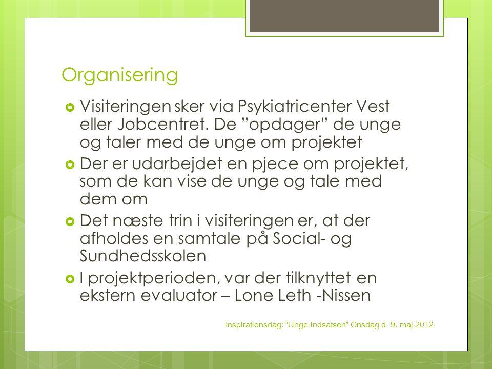Organisering Visiteringen sker via Psykiatricenter Vest eller Jobcentret. De opdager de unge og taler med de unge om projektet.