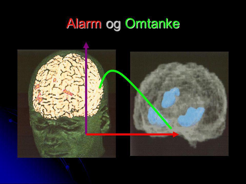 Alarm og Omtanke